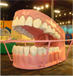 Giant model of teeth and gums in HealthWorks! Kids Museum